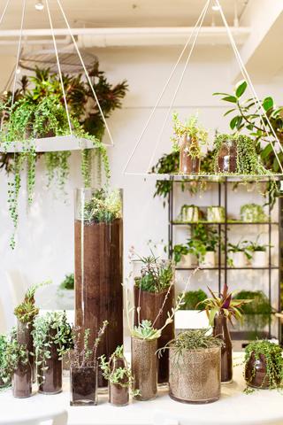 showroom3_11.11.jpg